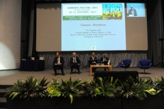 17.-Sorrento-Meeting-2015